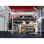 Foto de Los robots que cuidan de las vacas