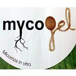 Foto de Grupo Kimitec presentar� su nueva empresa Agrocode en Fruit Attraction