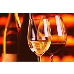 Foto de Francia reconoce el vino como parte de su patrimonio cultural
