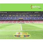 Picture of Optima Facility obtiene la adjudicaci�n de la limpieza de las instalaciones del Futbol Club Barcelona