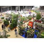 Fotografia de La ciudad gala de Angers ser� de nuevo la capital europea del vegetal