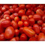 Fotografia de El tomate tiene su d�a en la Feria Cibus Tec