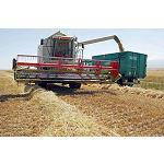Fotografia de Momento cr�tico para los agricultores por la ca�da de precios de los cereales