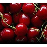 Fotografia de Chile planea exportar 100.000 toneladas de cerezas