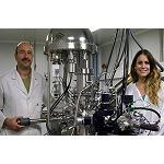 Foto de Una investigaci�n abre la puerta a dise�ar catalizadores a medida para hacer m�s eficientes los veh�culos y procesos industriales