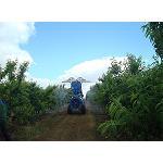 Foto de Aprobada la actualizaci�n de la normativa sobre comercializaci�n de determinados medios de defensa fitosanitaria