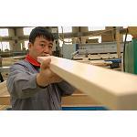 Foto de Lanzan el v�deo de imagen de la industria alemana de m�quinas para trabajar la madera en castellano