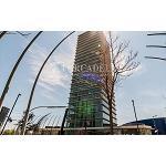 Foto de El incremento de las demandas de oficinas impulsa la promoción de nuevos proyectos en el sector