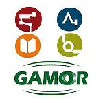 Picture of Workshops Gamor changes its logo
