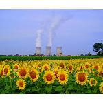 Fotografia de Les renovables: la millor alternativa a l'energia nuclear?