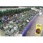 Fotografia de Com preparar el jard� a la primavera: terres i substrats de cultiu