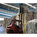 Picture of Spain recycles more than 5 million tonnes of paper and cardboard in 2012