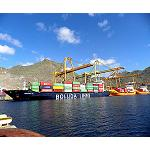 Picture of Capsa Fulfils 50 years like referent in the traffic of containers in Canaries