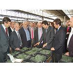 Picture of The minister of Agriculture visits the installations of Agroponiente