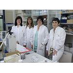 Picture of Researchers at the UPV/EHU created a new material capable of detecting alcohol and reusable