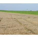 Foto de Una PAC para los agricultores activos profesionales