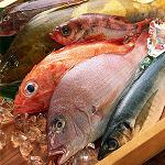 Picture of Report FAO on the world-wide market of products of the fishing