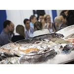 Picture of Seafood Barcelona consolidates  like centre of businesses for the sector pesquero of Spain and the south of Europe