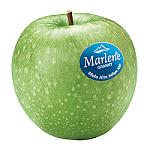 Picture of The apples Marlene participate in the Career of the Woman 2014