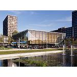 Picture of The American red oak saw the new student pavilion of the University Erasmus, in Rotterdam