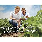 Fotografia de Nova identitat visual de Nunhems com Bayer CropScience Vegetable Seeds
