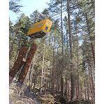 Fotografia de Itene participa en un proyecto europeo para optimizar la log�stica forestal
