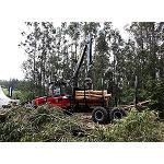 Picture of Galiforest se consolida como la cita forestal para el sur de Europa