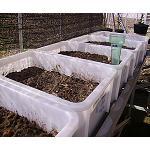 Fotografia de Las enmiendas org�nicas modifican la acci�n de los pesticidas