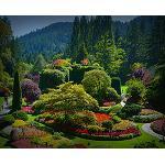 Fotografia de Las cuatro estaciones de los c�lebres The Butchart Gardens