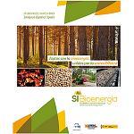 Foto de Feria de Zaragoza acoger� el I Sal�n Internacional de Bioenerg�a