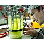 Picture of C�mo emprender en biotecnolog�a