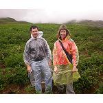 Foto de Neiker investiga los genes de patata que mejor se adaptan al cambio clim�tico