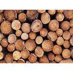 Foto de Diagn�stico del sector de la madera en Espa�a