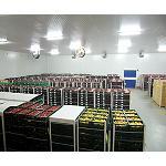 Picture of El transporte de alimentos a temperatura controlada