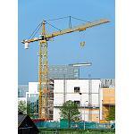 Foto de �xito mundial de la gr�a torre tipo 1000 EC-H de Liebherr