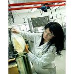Fotografia de Integrar principios activos microencapsulados para cosm�ticos m�s funcionales