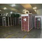 Picture of El transporte de alimentos a temperatura controlada: la cadena de fr�o