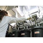Fotografia de Instalar�n la primera planta piloto para generar energ�a y bionutrientes a partir de la paja del cultivo de arroz en la Albufera de Valencia