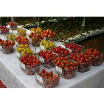 Fotografia de Syngenta trae a Fruit Attraction sus variedades m�s innovadoras para los lineales del supermercado