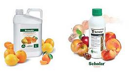 Foto de Tecnidex presenta en Fruit Attraction novedades exclusivas para la sanidad hortofrutícola