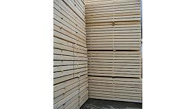 Foto de El 81% de las importaciones de madera en España proviene de zonas de riesgo despreciable (EUTR)
