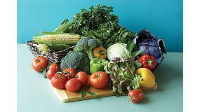 Foto de La importaci�n espa�ola de frutas y hortalizas en noviembre crece un 17% en volumen y un 20% en valor