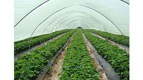 Foto de Noviembre repite el descenso de la exportaci�n de frutas y hortalizas frescas, con 2% menos en volumen y 3% en valor