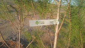 Foto de El Bosque Scania sigue creciendo