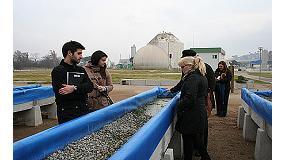 Foto de Urban River Lab permite estudiar el efecto de distintas especies de plantas acuáticas para la depuración de aguas residuales