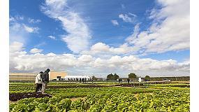 Foto de Rijk Zwaan re�ne a la cadena agroalimentaria en las V Jornadas de Cultivos de Invierno al Aire Libre