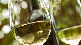 Fotografia de El Parlamento Europeo podr�a poner en riesgo las campa�as de promoci�n del consumo moderado de vino