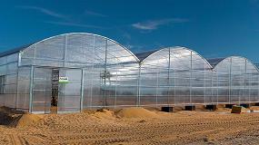 Picture of Ulma Agr�cola instala invernaderos en el desierto