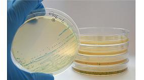 Foto de Listeria Defense, nuevo servicio de Betelgeux contra Listeria