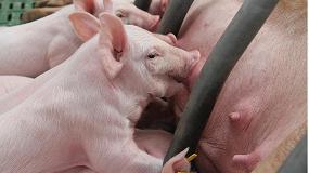 Foto de Notable subida de casi el 10% de la industria española de sanidad y nutrición animal en 2014